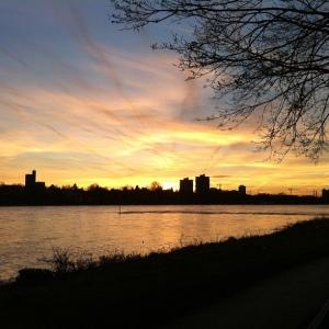 Rhine side sundown in Cologne