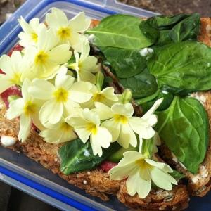 Salami and Primrose Sandwich - Delicious!